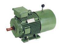 brake Motor, electric brake motor are used when power is cut off, high speed electric motors, electric motor & pumps, supplier & dealer, Shital Electric Co, vadodara, baroda, gujarat, India - Image