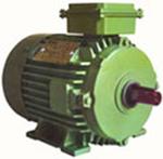 crane duty motors are suitable for any kind of cranes & lifts, high speed crane duty electric motor - supplier & dealer, Shital Electric & Co, vadodara, baroda, gujarat, India - Image