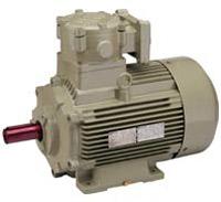 image - flameproof motors are used to prevent flames, electric motors & pumps - supplier & dealer, shital electric co, vadodara, baroda. Gujarat, India